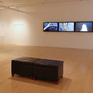 L'anatomie du Bling, Galerie Dominique Bouffard, 2015