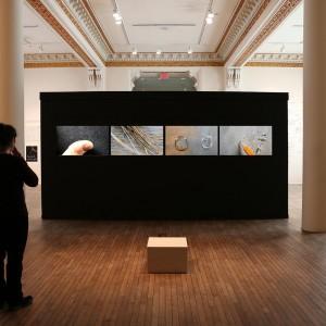 L'anatomie du Bling au Musee des Beaux-Arts de Sherbrooke, 2015