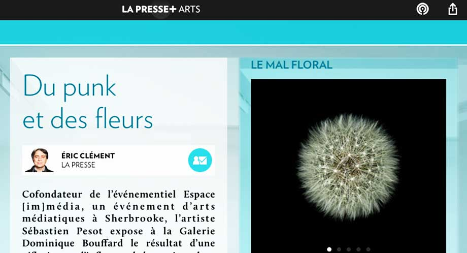 La Presse + Punk and flowers