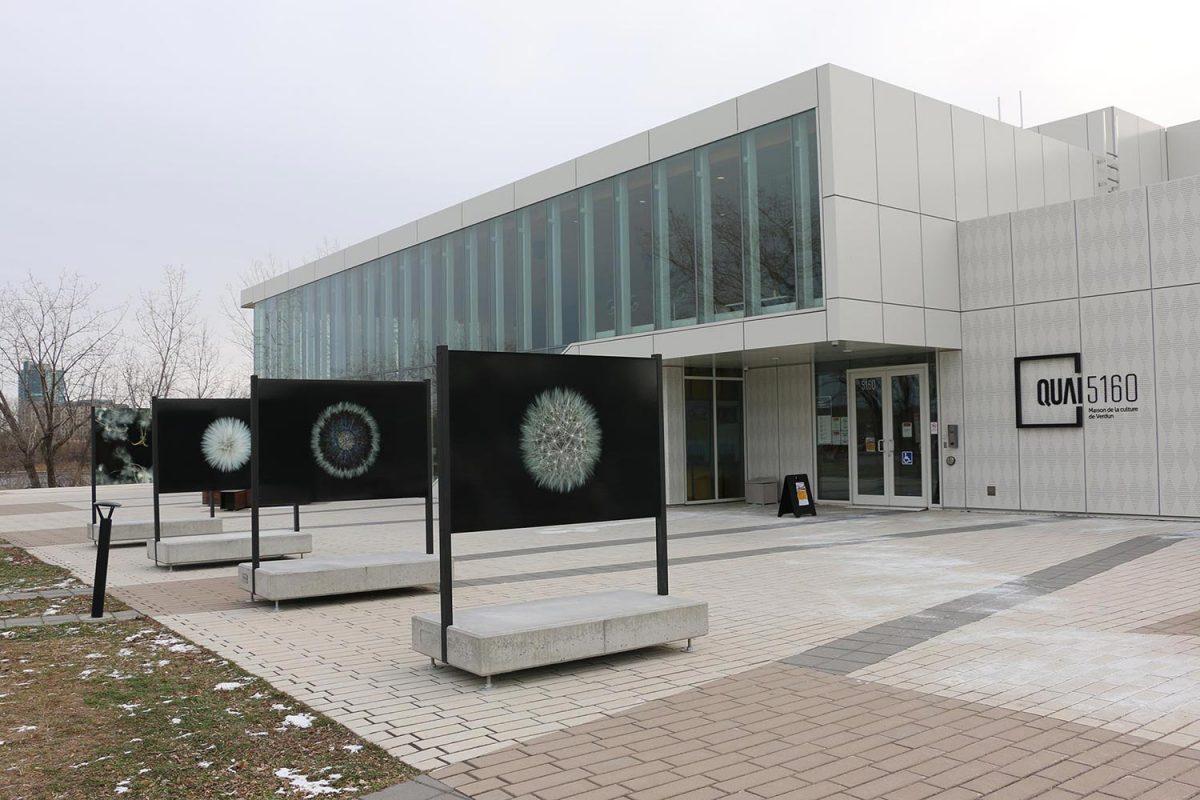 Quai 5160 Maison de la culture Verdun